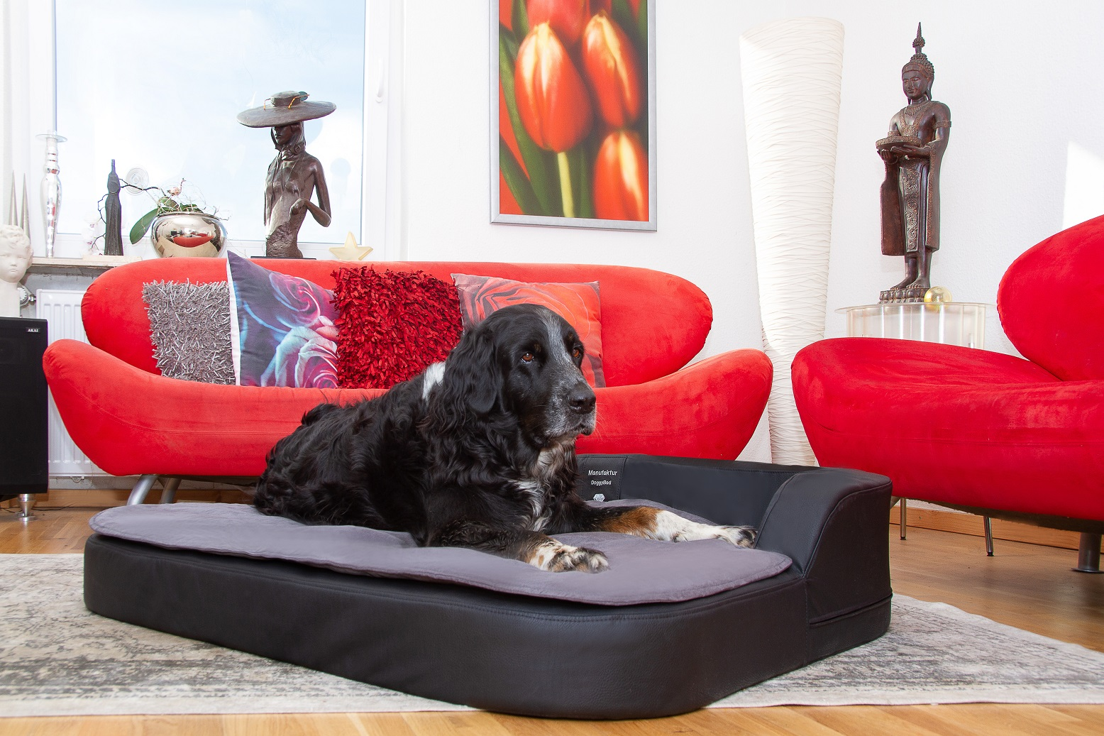 DoggyBed Hundekissen Medical Style Plus