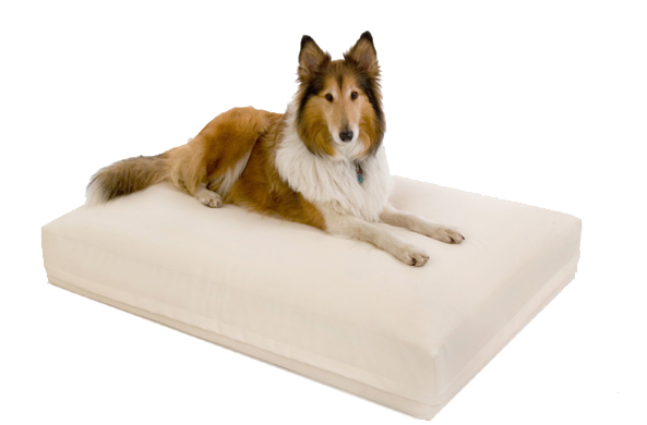 DoggyBed ® Aqua Style hell beige