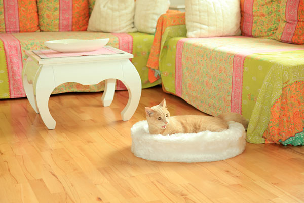 CatBed® Dream Style